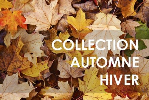 Collection de chaussons automne hiver
